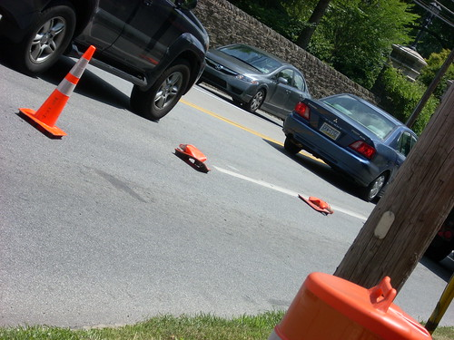 Dead Cones On Montgomery Ave