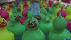 rubber duckies the movie (lomokev) Tags: pink game paris green water yellow pen toys duck video focus dof ducks floating fair olympus rubber depthoffield plastic pato rubberducky highdefinition hd magicroundabout float olympuspen rubberduck duckies rubberducks ep1 rubberduckies olympuspenep1
