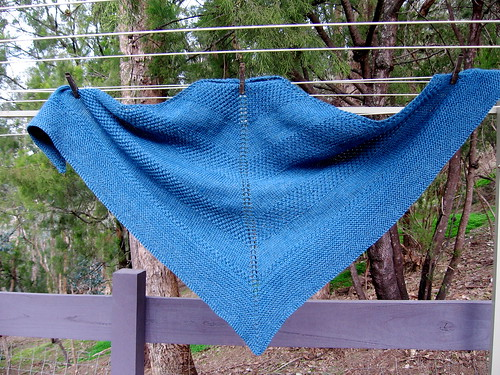 textured shawl with bonus purple fence for Stomper's viewing pleasure