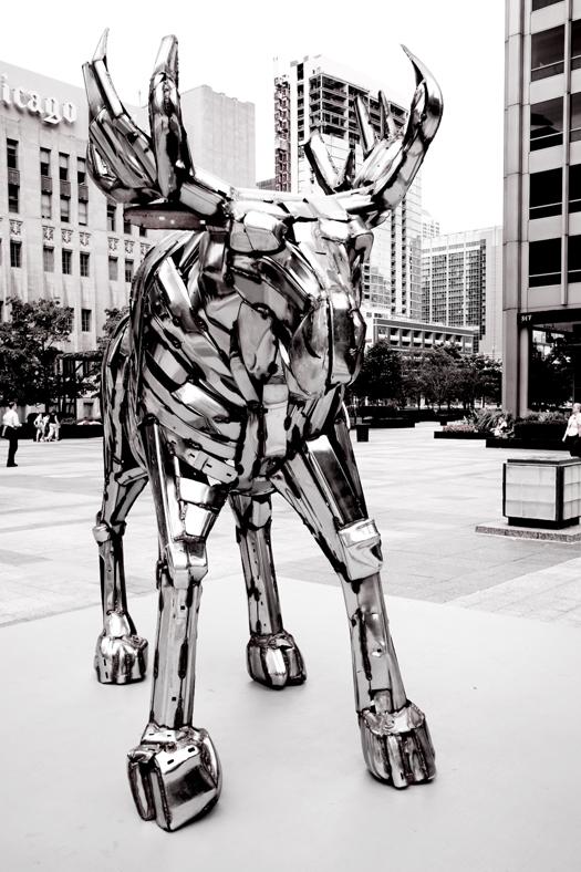 chicago_0115