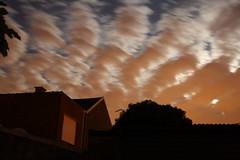 Moonlit Clouds (Tetramesh) Tags: tetramesh waarschoot belgium belgië belgique belgien oostvlaanderen eastflanders vlaanderen meetjesland flanders cloud clouds night moonlight lievegem