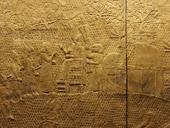 BM_ANE444 (sipazigaltumu) Tags: london museum ancient near antique east bm british mesopotamia basrelief reliefs assyrian antiquit ashurnasirpal antiquite ashurbanipal assurbanipal orthostat assurnasirpal orthostate tiglathpilesar tiglatpilesar tiglatpileser