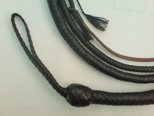 10' Morgan Blacksnake (ca. 2001) - Handle Area by AldoZL.