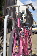 (Mary Hennessy) Tags: amsterdam streetphotography jordaan