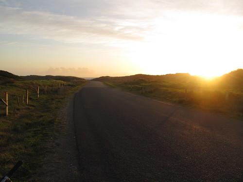 Road to the black sand beach - Wanganui, NZ