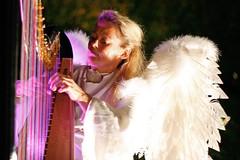 Harpist - elvelangs
