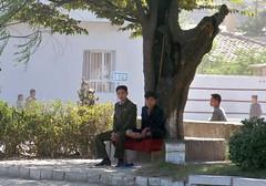 Men under tree in Haeju North Korea (Ray Cunningham) Tags: tourism del republic north korea tourist peoples communism american democratic socialism norte corea dprk koryo haeju    raycunningham  zaruka raymondkcunninghamjr raymondkcunninghamjr northkoreanphotography raycunninghamnorthkoreanphotography dprkphotography