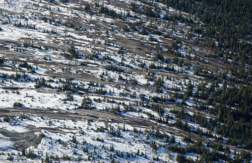 DSC_9863 Granite, snow, and trees