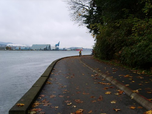 Seawall Run_1749