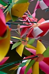 """Catavento (Roberto Ripoli) Tags: amigos brasil de pessoas fest brooklin chopp saída prazer catavento alemã """"roberto popular"""" paulo"""" """"festa rua"""" 2009"""" """"sãopaulo"""" """"são ripoli"""" fotográficas"""" """"robertoripoli"""" """"festaderua"""" """"brooklinfest2009"""" """"brooklinfest"""" """"festapopular"""" """"saídasfotográficas"""" """"brooklin """"saídas"""