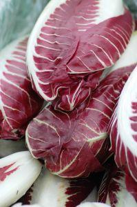 radicchio by salsachica on www.sxc.hu.com
