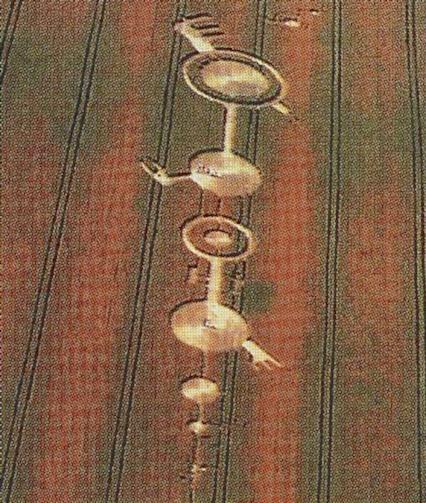 crop-circle-03