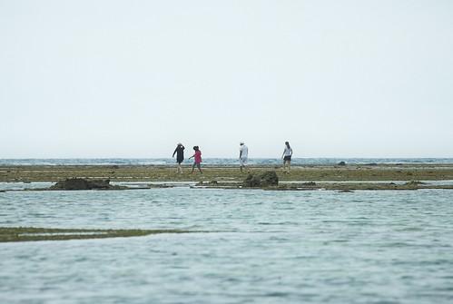 Yaeyama islands_072