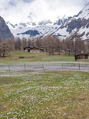 _SLT0580 (Jurajko) Tags: austria grossglockner skisnowholiday