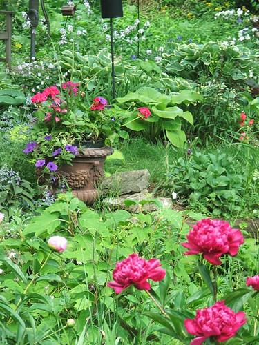 Garden in pink progress