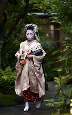 out of new green leaves (Onihide) Tags: green leaves japan kyoto explore maiko kimono apprenticegeisha gionkobu takahina