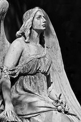 Angel beauty (melquiades1898) Tags: bw sculpture friedhof beauty cemetery statue angel nikon cologne skulptur kln sw engel schnheit d90 melatenfriedhof