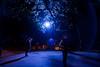 under the blue tree (*vlad*) Tags: blue sydney vivid australia 1022mm canonefs1022mmf3545usm top20blue