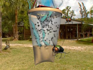 Get Rid of Flies with Flies-Away