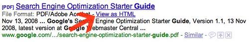 Google PDF View