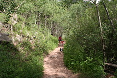 The Family on Horseshoe Trail (Twin Spruce, Colorado, United States) Photo