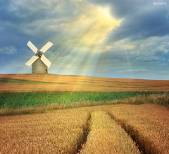 The Magic Windmill (Ben Heine) Tags: light sunset summer wallpaper sky orange sun tractor france hot windmill colors field yellow clouds composition jaune sunrise season print poster bread landscape soleil countryside pain corn warm poem colours nikond70 path lumire farm couleurs south magic horizon perspective champs traces peaceful manipulation calm crop harmony poet photomontage normandie farmer midi sunrays t copyrights campagne normandy chaud ferme chemin rayons saison bl kleuren luminosity chaleur fermier moulinvent petersquinn benheine flickrunitedaward obramaestra infotheartisterycom