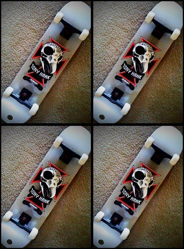 I buy Tony Hawk Birdhouse skateboards from WarehouseSkateboards.com picture