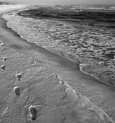 topsail hill state park b&w