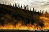 ADS_USA_000003870 (dickysingh) Tags: travel usa india mist america landscape photographer outdoor scenic roadtrip steam aditya yellowstone geyser singh dicky adityasingh ranthamborebagh theranthambhorebagh wwwranthambhorecom