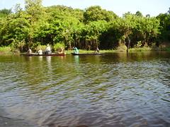 No rio Amazonas (Wilmar Santin) Tags: brazil brasil amazon brasilien paisagem amazonas brsil amazonia amaznia amazone amazzonia rioamazonas ribeirinha amazonien riodelleamazzoni paisagemamaznica amazinien paisagemribeirinha paisagemamazonica paisagemribeirinhaamaznica