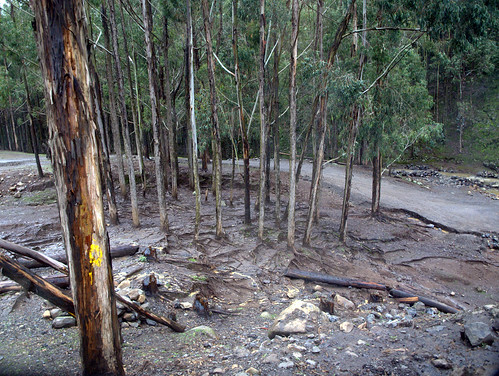Suelo degradado (Etiopía)