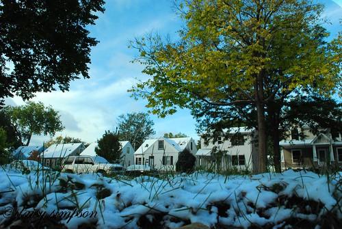 056 First Snow