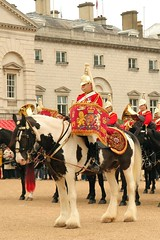 Drum horse and band (HighRiseLights) Tags: uk red england horse music london musicians army uniform britain military band lifeguard shire guards brass britisharmy cavalry 1112 horseguard queensguard shirehorse drumhorse householdcavalry militaryband changingtheguard militarymusic bandofthelifeguards