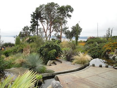 View of water feature and Arbutus