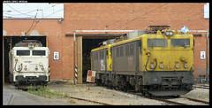 269s en Can Tunis (javier-lopez) Tags: train tren trenes railway taller mm japonesa dt mquina renfe 269 adif ffcc mercancas 22092007 dobletraccin barcelonacantunis mandomltiple