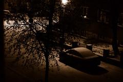 365/365 - Snowfall (Johanna Bocher) Tags: winter snow tree car sepia dark evening nikon december shadows newyearseve 365 snowfall d40 project365 godisanastronaut 365x2009 311
