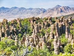 Standing Up Rocks (rovingmagpie) Tags: arizona hoodoos willcox chiricahuanationalmonument chiricahuamountains absolutelystunningscapes springbreak2010 bigbalancedrocktrail sb2010day5