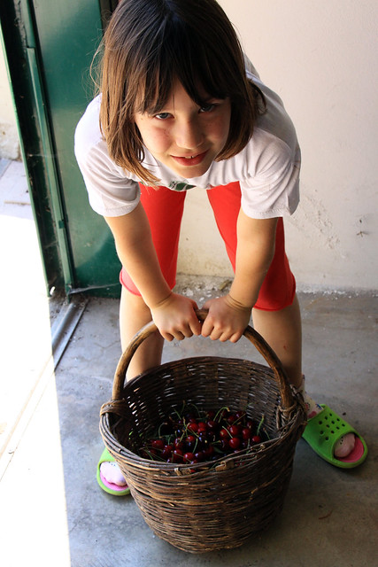 cherries gloria4