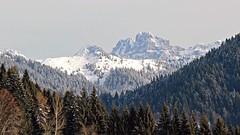 Mount Civetta - Dolomites (ab.130722jvkz) Tags: italy veneto alps easternalps dolomites civettagroup mountains winter snowfall