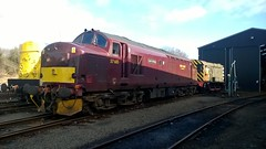 37685 in Bo'ness (Liam 55022) Tags: 37685 loch arkaig boness