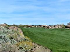Troon North Pinnacle #7 left side of fairway 392 (tewiespix) Tags: troonnorth golfcourse golf pinnacle phoenix scottsdale arizona