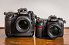 Duel // Nikon D2X (2005) / Nikon D200 (2005) (maoby) Tags: bleu camera collection nikon 24120mm d2x d200 vintage old vieux funny