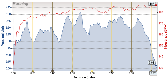 Fun race - pace and heart rate