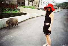 Flapper Girl 2009*4 (Twiggy Tu) Tags: portrait film pig jj lomo lca taiwan 2009 photographyexhibition flappergirl aplusphoto hotlomo lomo