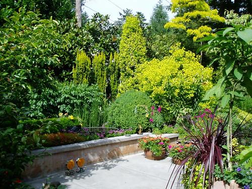 Dunn Curator Garden 1