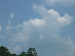 Running Dog Cloud