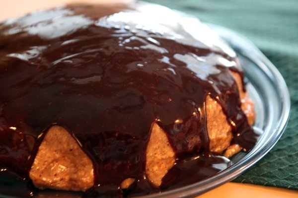 hazelnut cake with chocolate icing