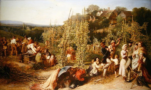 Phoebus_Levin-hop_garden