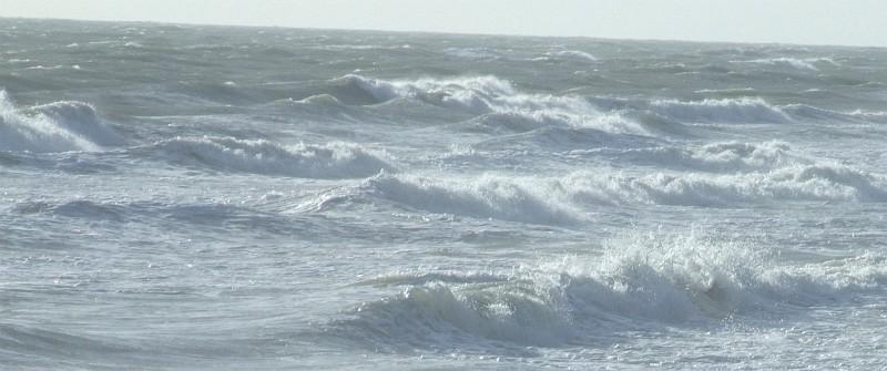 wave surf 07