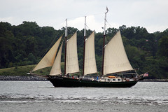 Schooner Alliance passing under Coleman by Stephen Little, on Flickr